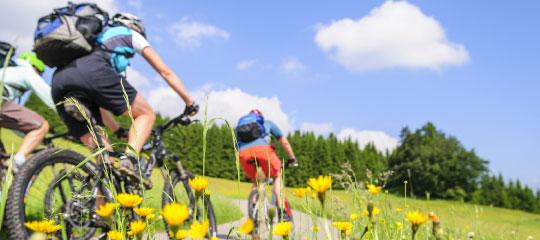 Aktivurlaub Rad Sommer Allgäu Bodensee
