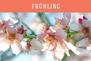 Urlaub im Allgäu im Frühling